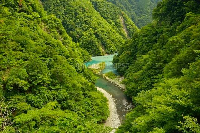 寸又峡の夢の吊橋の写真素材 [FYI03115175]