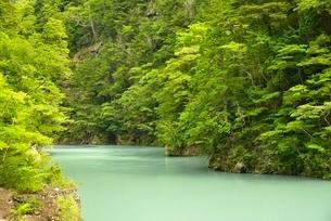 寸又峡の大間ダムの写真素材 [FYI03115178]