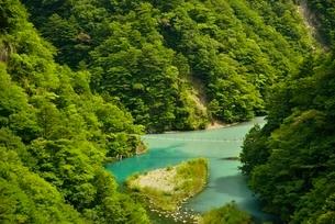 寸又峡の夢の吊橋の写真素材 [FYI03115185]