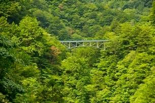 寸又峡の天龍橋の写真素材 [FYI03115191]