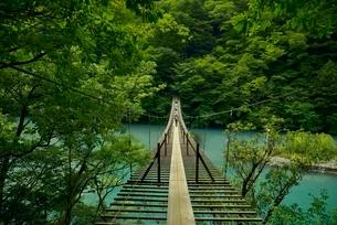 寸又峡温の夢の吊橋の写真素材 [FYI03115193]