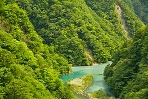 寸又峡の夢の吊橋の写真素材 [FYI03115194]