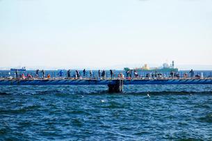 本牧海づり施設の写真素材 [FYI03115500]