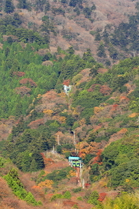 秋の大山ケーブルカーの写真素材 [FYI03115538]