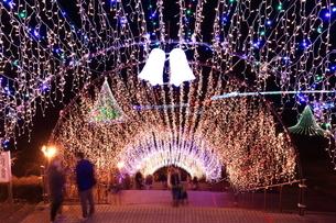 神奈川県 宮ヶ瀬のクリスマスイルミネーションの写真素材 [FYI03115558]