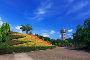 花壇のある相模原麻溝公園の写真素材 [FYI03115572]