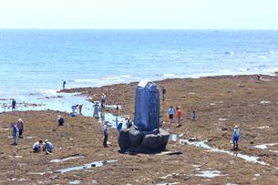 大潮の湘南海岸の写真素材 [FYI03115577]