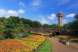 花壇のある相模原麻溝公園の写真素材 [FYI03115578]