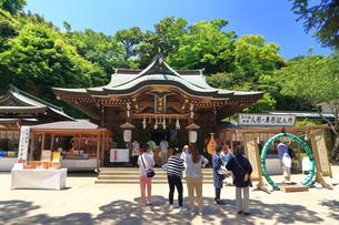 江の島 江島神社の辺津宮の写真素材 [FYI03115582]