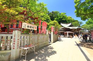 江の島 江島神社の奉安殿の写真素材 [FYI03115584]
