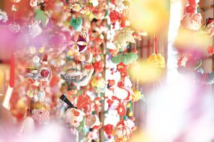 都筑民家園のひな祭りの写真素材 [FYI03115643]