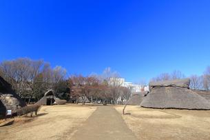 大塚歳勝土遺跡公園の写真素材 [FYI03115765]