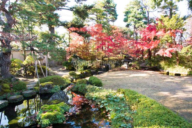 洗心庵の秋の写真素材 [FYI03115771]