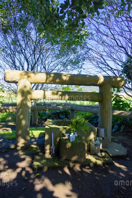 日本最古の井戸 玉の井の写真素材 [FYI03115800]