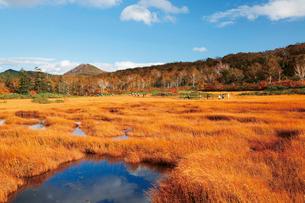 神仙沼湿原と小沼の写真素材 [FYI03115851]
