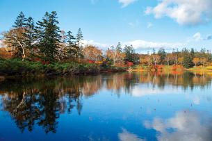 沼畔から秋の神仙沼の写真素材 [FYI03115856]