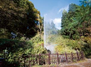 鳴子温泉の間歇泉の写真素材 [FYI03115948]
