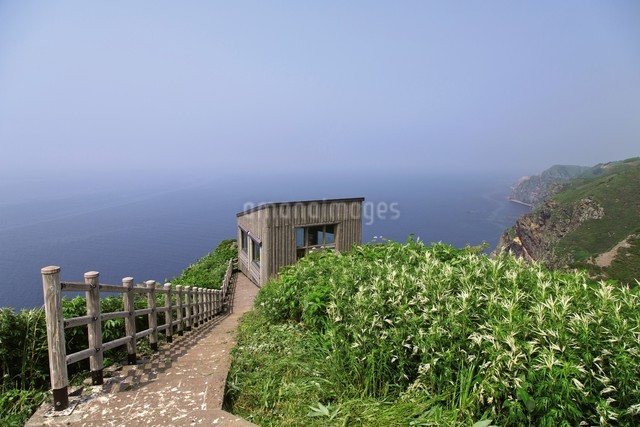 天売島の海鳥観察舎の写真素材 [FYI03115998]