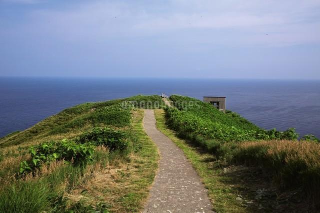 天売島の海鳥観察舎の写真素材 [FYI03116010]