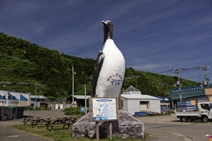 天売島の風景の写真素材 [FYI03116015]