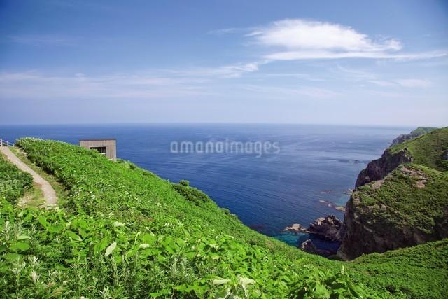 天売島の海鳥観察舎の写真素材 [FYI03116023]