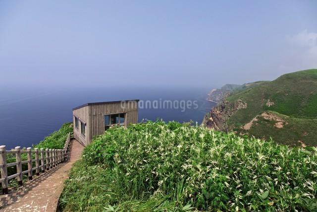 天売島の海鳥観察舎の写真素材 [FYI03116027]