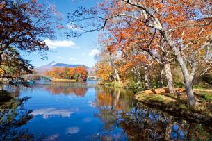 紅葉の大沼公園と駒ケ岳の写真素材 [FYI03116108]