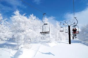 山形蔵王の樹氷の写真素材 [FYI03116199]
