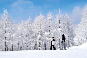 山形蔵王の樹氷の写真素材 [FYI03116202]