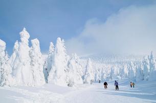 山形蔵王の樹氷の写真素材 [FYI03116213]