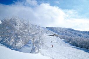 山形蔵王の樹氷の写真素材 [FYI03116222]