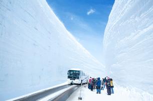 室堂平の雪の大谷の写真素材 [FYI03116422]