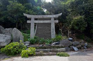 野崎島 旧野崎集落の鳥居の写真素材 [FYI03116605]