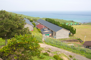 野崎島自然学習村の外観の写真素材 [FYI03116611]