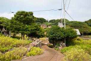 野崎島 旧野崎集落と道の写真素材 [FYI03116639]