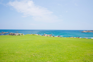 種差海岸にて種差天然芝生地の風景の写真素材 [FYI03116838]