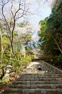 春の室生寺の鎧坂の写真素材 [FYI03117192]
