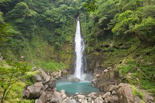 山深い渓谷を流れる千里ヶ滝の写真素材 [FYI03117487]
