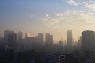 朝焼けの東京タワーと朝日を受けて輝く港区のビル群の写真素材 [FYI03117851]