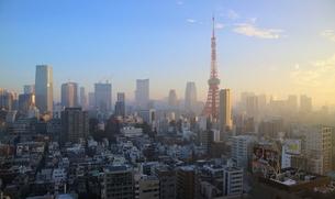 朝焼けの東京タワーと朝日を受けて輝く港区のビル群の写真素材 [FYI03117858]