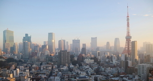 朝焼けの東京タワーと朝日を受けて輝く港区のビル群の写真素材 [FYI03117860]