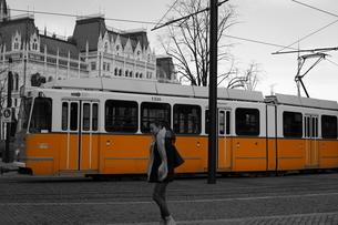 ブダペストを走るトラムの写真素材 [FYI03117877]