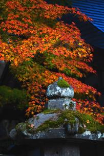 会津 福満虚空菩薩円蔵寺の紅葉の写真素材 [FYI03117884]