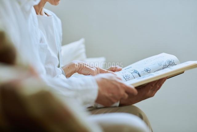 家で読書をする夫婦の写真素材 [FYI03118091]