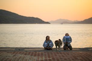 柴犬と散歩の写真素材 [FYI03118561]