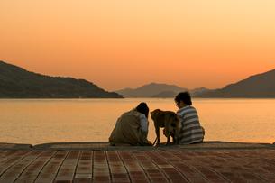 柴犬と散歩の写真素材 [FYI03118564]