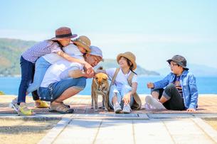 海岸で柴犬をさわってみるの写真素材 [FYI03118566]