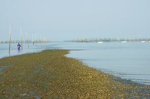 有明海の引き潮の写真素材 [FYI03118742]