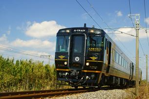 特急「A列車で行こう」の写真素材 [FYI03118772]