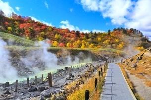 玉川温泉の紅葉の写真素材 [FYI03118855]